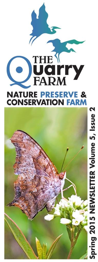 2015 Spring Newsletter cover