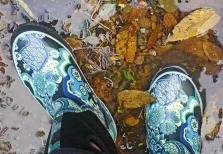Boots Creek