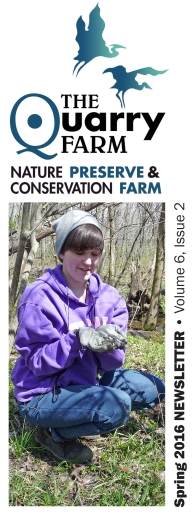 Spring 2016 TQF Newsletter cover